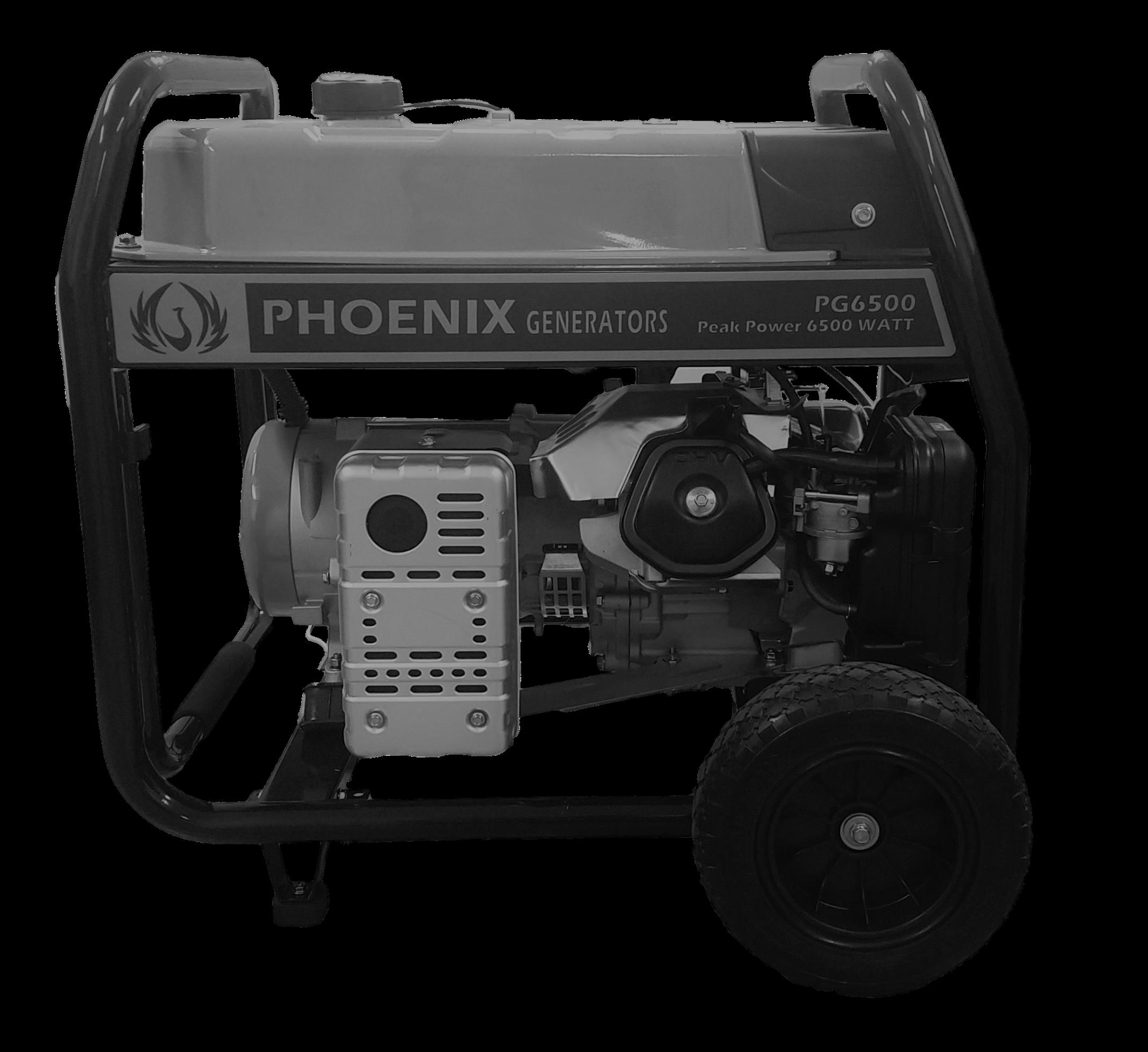 Phoenix 6500 Gas Generator